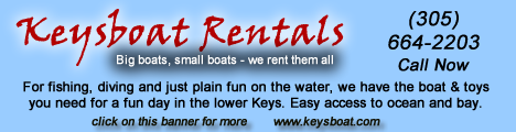 Florida Keys boat rentals for fishing, diving or family fun on the water.